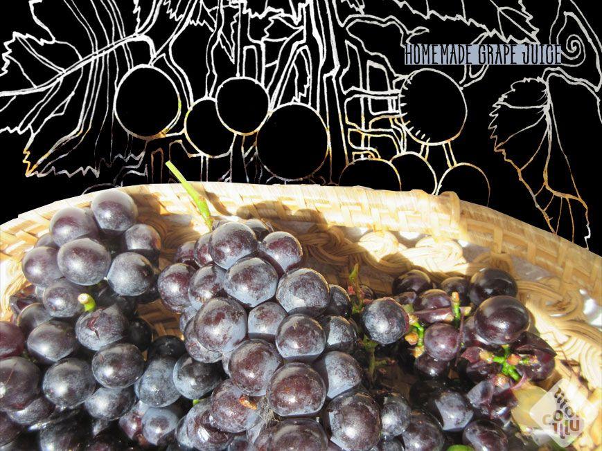 homemade-grape-juice