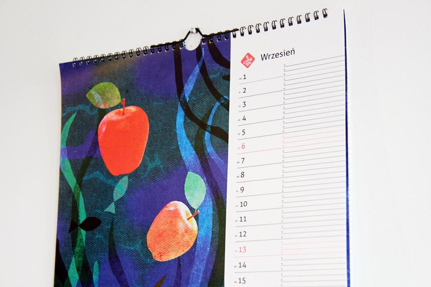 kalendarz cookillu zdjęcia (3)