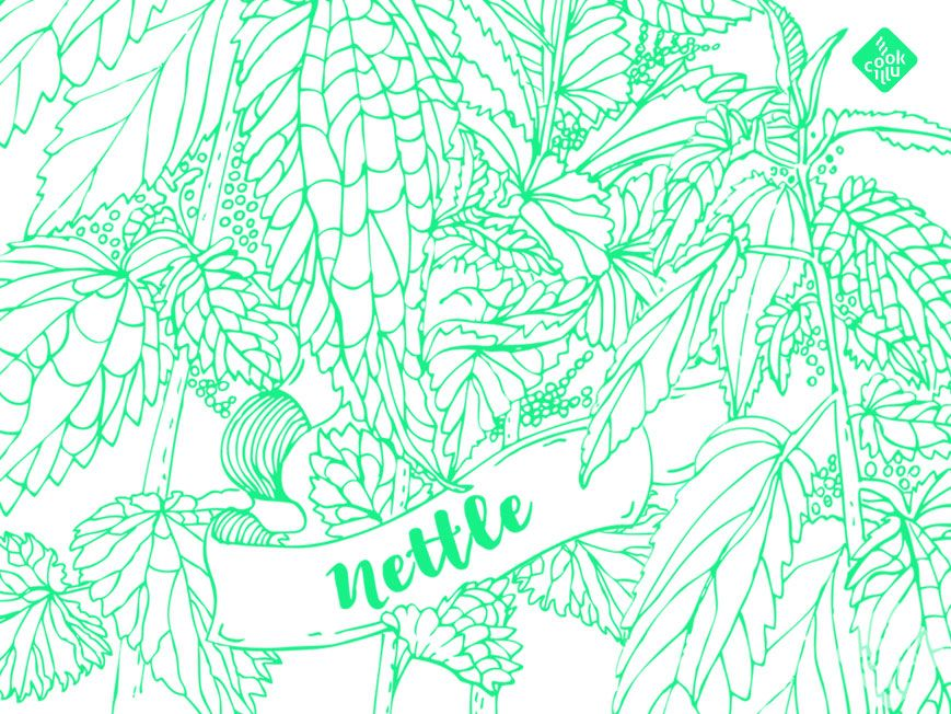 nettle-drawing-Coloring page