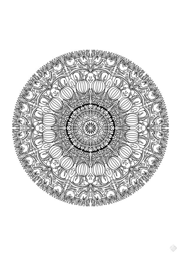 mandala-vegetables