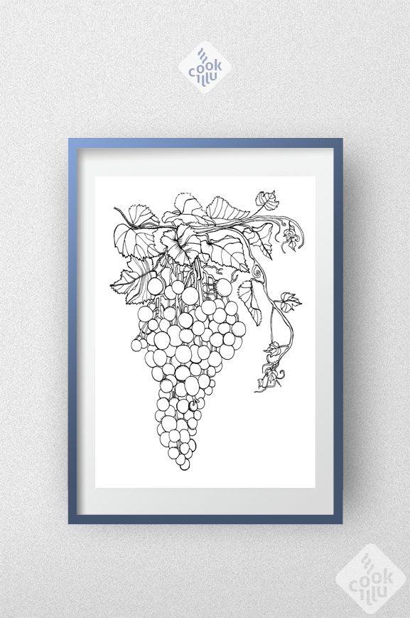 winogrona-kolorowanka-do-pobrania